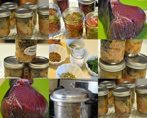 Post image for Packing and Pressure Canning  Tuna
